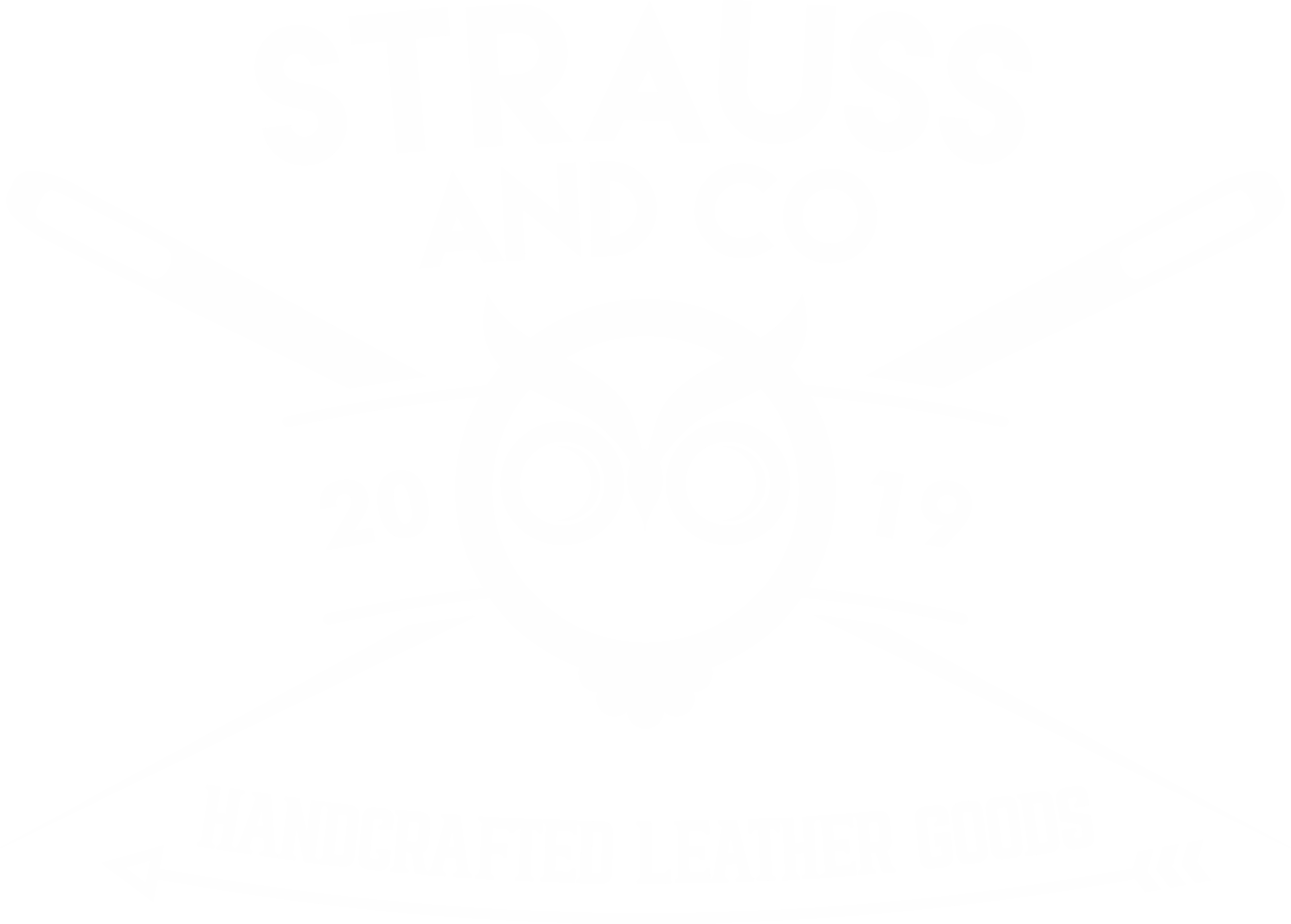 Strauss and Co
